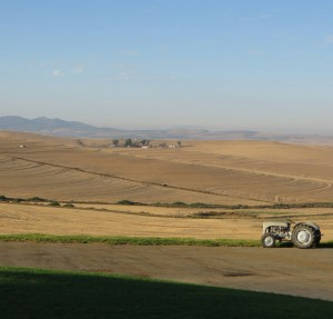 Ausblick von meinem neuen Arbeitsplatz in Südafrika