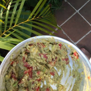 Backpacker Guacamole