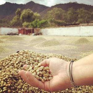 Kaffee Azotea bei Antigua